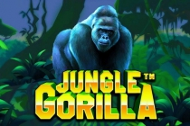 Jungle Gorilla